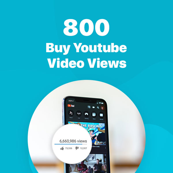 800 youtube video views